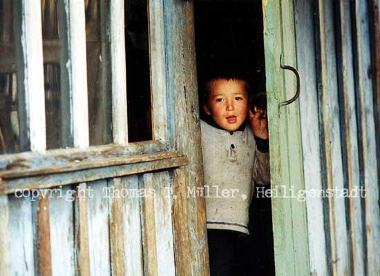 Neugier im Altaigebirge.(Foto für die Ausstellung »Von der Ostsee zum Altai«, Sibirien 2002)