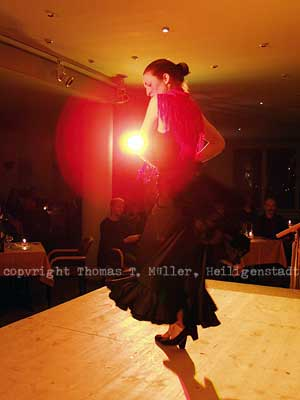 Spanische Tänzerinim Eichsfelder Kulturhaus(Foto für Thüringer Allgemeine, 2003)